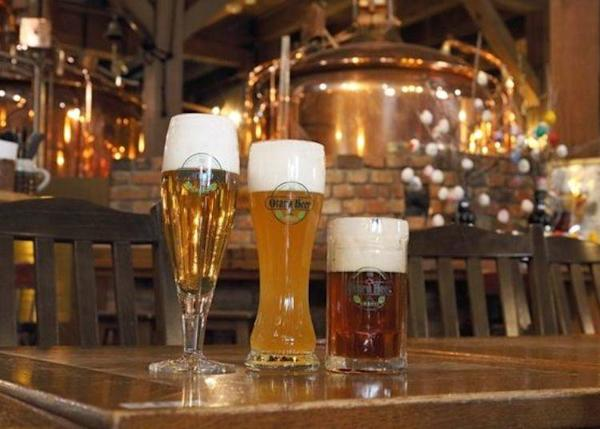 Try the Pilsner, Weiss, and Dunkel to see which one you like best.