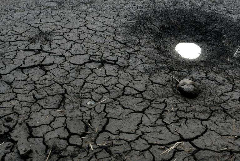 A world that heats up by 2C (3.6 degrees Fahrenheit) could see mass displacement due to shortages of food and fresh water and the loss of animal and plant species at an accelerated speed