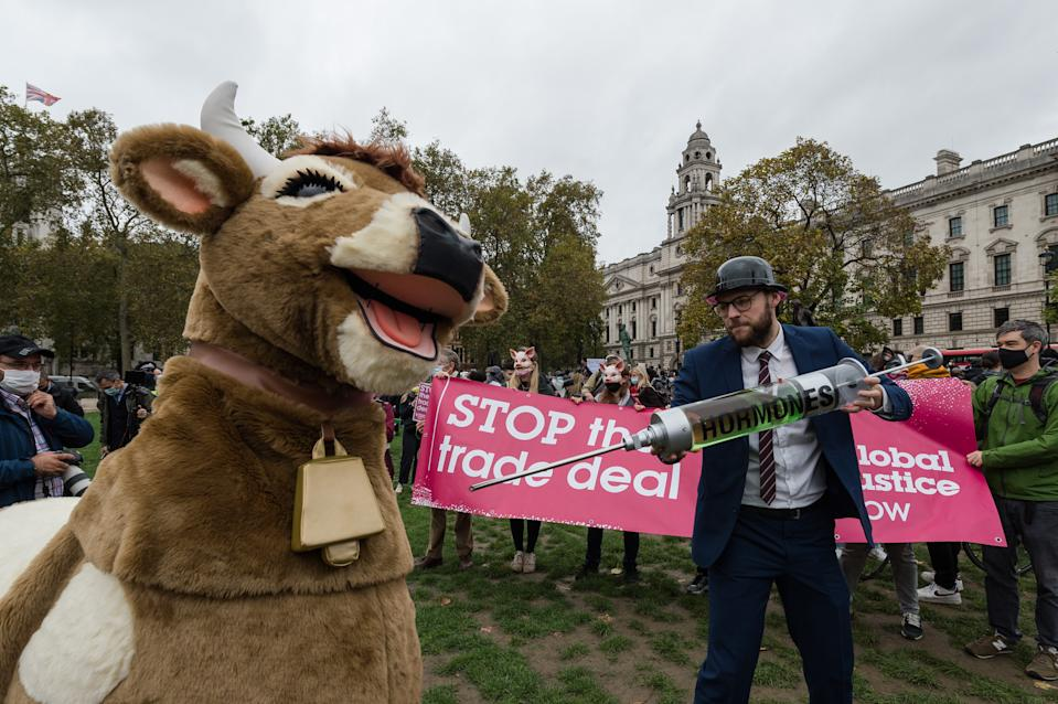 A protester holds a syringe with hormones to inject into a cow during a protest in Parliament Square against a post-Brexit trade deal between the UK and the USA on 24 October, 2020 in London, England. Protesters demonstrate against the possibility of opening the NHS to American healthcare companies, lowering food standards, deregulation of environmental and data privacy laws as part of the UK - US trade deal. (Photo by WIktor Szymanowicz/NurPhoto via Getty Images)