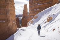 <p>Visitors to Bryce Canyon National Park come to walk through the red rock hoodoos, which are spire-shaped rock formations that you can't find just anywhere. During the winter, visitors may even get to see the hoodoos sprinkled with snow. </p>