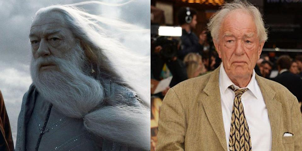 <p><strong>First Film</strong>: <em>Harry Potter and the Prisoner of Azkaban</em></p><p><strong>Character Played: </strong>Albus Dumbledore</p><p><strong>Age: </strong>79</p><p>Following Richard Harris' death, Gambon took on the iconic role of master wizard Albus Dumbledore. He starred in 2019's <em>Judy</em>, which earned Renée Zellw<em>eger </em>an Oscar.</p>