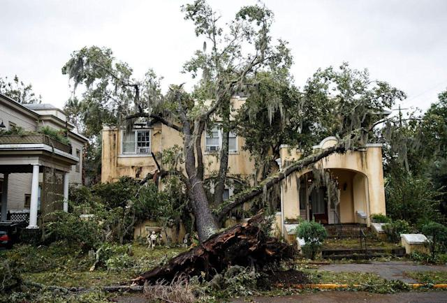 <p>A downed tree from Hurricane Matthew rests against a home, Oct. 8, 2016 in Savannah, Ga. Across the Southeast, over 1.4 million people have lost power due to Hurricane Matthew. As of Saturday morning, Matthews has been downgraded to a category 1 hurricane. (Photo: Drew Angerer/Getty Images) </p>