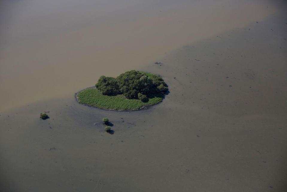 <p>This July 5, 2016 photo, shows an aerial view of a polluted lagoon near Olympic Park in Rio de Janeiro, Brazil. Promises to clean up Rio's waterways stretch back decades, with a succession of governors setting firm dates for a cleanup and repeatedly pushing them back. (AP Photo/Felipe Dana)</p>