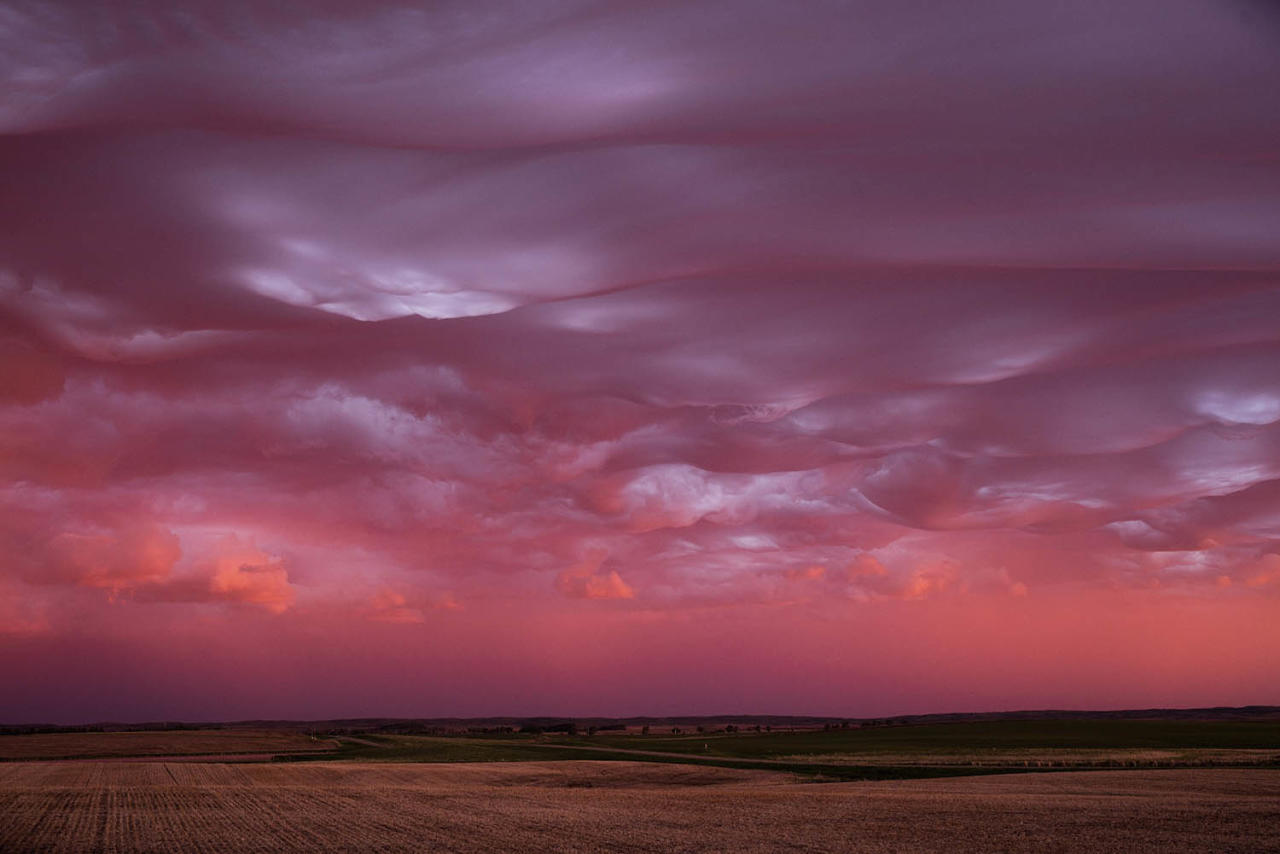 <p>Mike Olbinski, 42, captured the stunning scenes while storm chasing with a group of friends northeast of Bismarck, N.D. (Photo: Mike Olbinski/Caters News) </p>