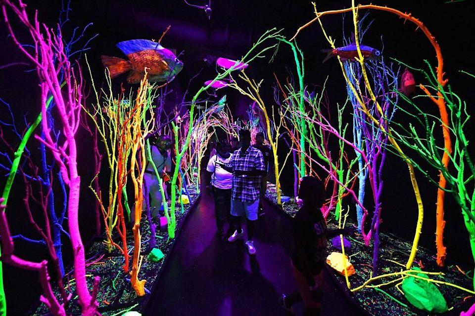 <p>Perfectly encapsulating the whimsy of Sante Fe, Meow Wolf is an interactive art experience that makes surrealism become reality.</p>