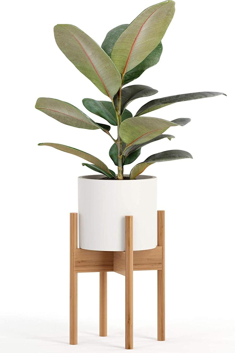 """<br><br><strong>fox & fern</strong> Fox & Fern Mid-Century Modern Plant Stand, $, available at <a href=""""https://www.amazon.com/Fox-Fern-Mid-Century-Modern-Plant/dp/B08BS4FK6T"""" rel=""""nofollow noopener"""" target=""""_blank"""" data-ylk=""""slk:Amazon"""" class=""""link rapid-noclick-resp"""">Amazon</a>"""