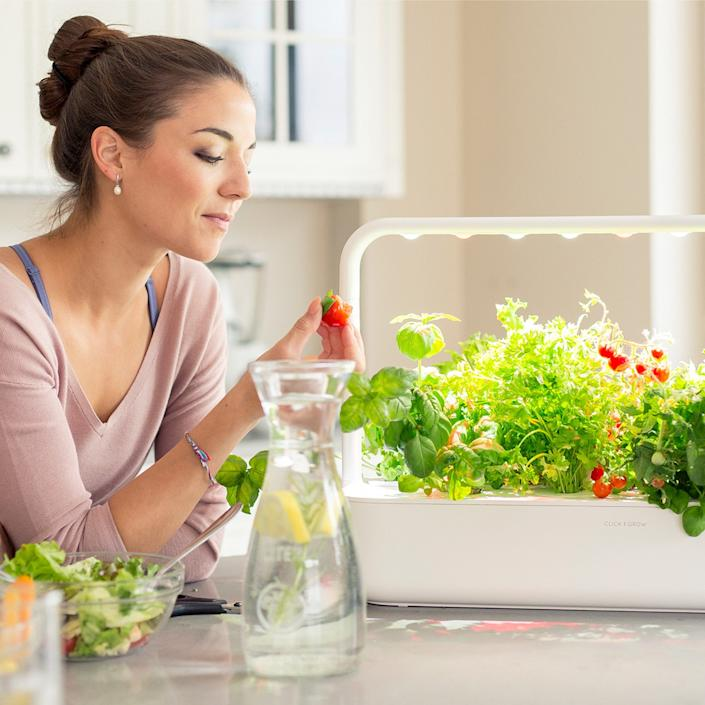 """<div class=""""caption""""> The Click and Grow Smart Garden 3 waters your plants for you. </div>"""
