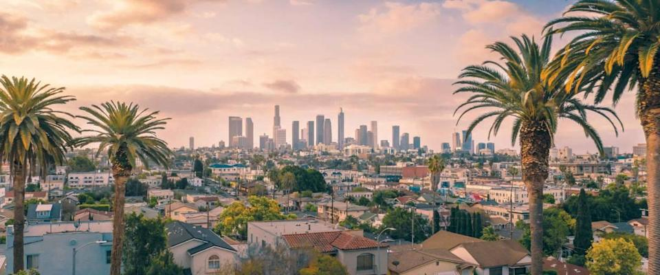 Beautiful sunset of Los Angeles downtown skyline and palm trees