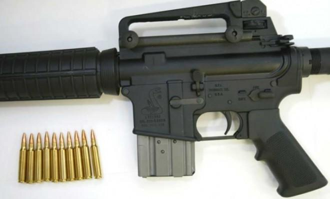 The Bushmaster rifle is a military-grade weapon used in the Newtown massacre.