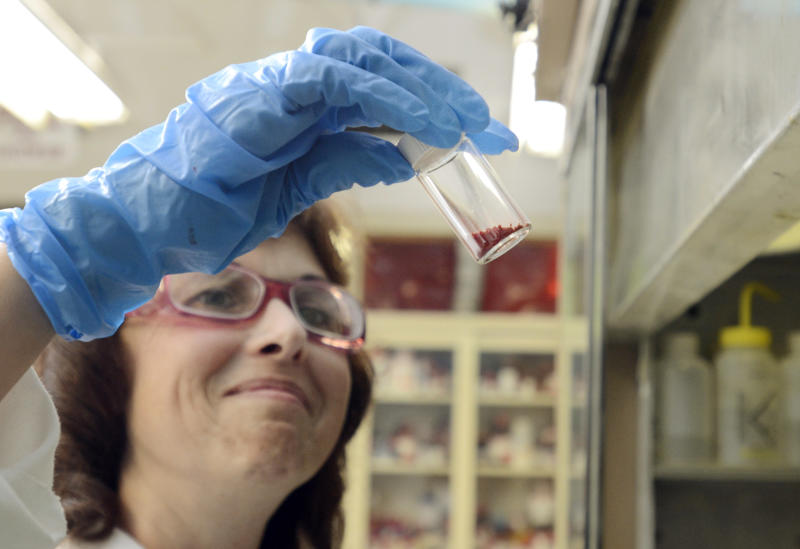 In this Aug. 28, 2013 photo, Kodak Research Technician, Grace Bennett, inspects proprietary Kodak ink for Kodak print applications in the synthetic chemistry lab at the Kodak research lab in Rochester, N.Y. (AP Photos/Heather Ainsworth)
