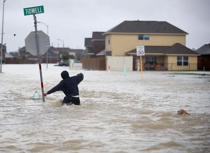 A person walks through a flooded street with a dog in Houston.
