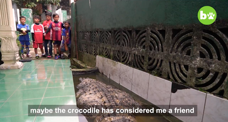 Local kids are completely unafraid of the deadly beast. Source: Barcroft TV