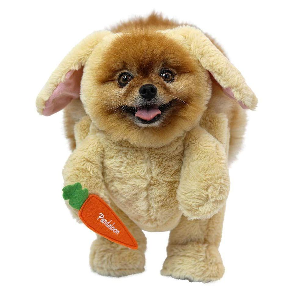 """<p>As seen on Shark Tank...and in your dog's nightmares.</p><br><br><strong>Pandaloon</strong> Walking Teddy Bear with Arms, $34.99, available at <a href=""""https://www.amazon.com/Pandaloon-Bunny-Rabbit-Halloween-Costume/dp/B07F83R4HP/"""" rel=""""nofollow noopener"""" target=""""_blank"""" data-ylk=""""slk:Amazon"""" class=""""link rapid-noclick-resp"""">Amazon</a>"""