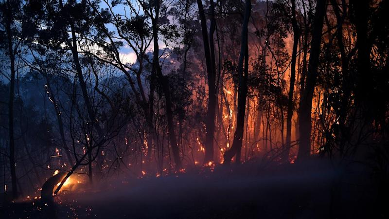 At least 100 homes have been lost in northern NSW north, with about 80 fires still burning