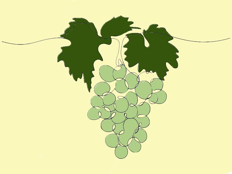 From Kent to Cornwall, here are a handful of our favourites vineyards around the country: iStock