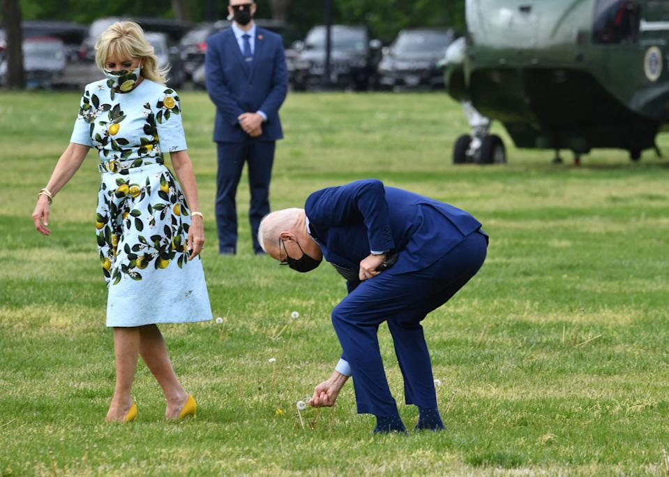 President Biden stopped to pick a dandelion flower for First Lady Jill Biden before boarding Marine One to Georgia on April 29. (Photo: Nicholas Kamm / AFP) (Photo by NICHOLAS KAMM/AFP via Getty Images)