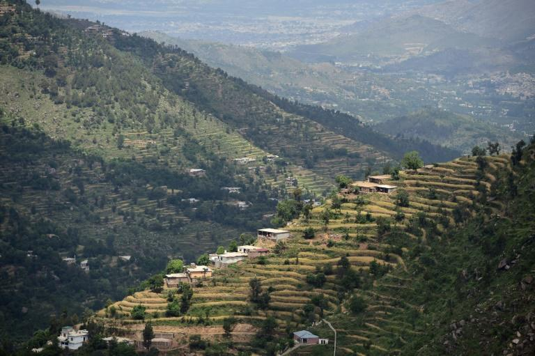 The Swat valley of Khyber Pakhtunkhwa in northwest Pakistan, where previously arid hills are now covered with forest as far as the horizon
