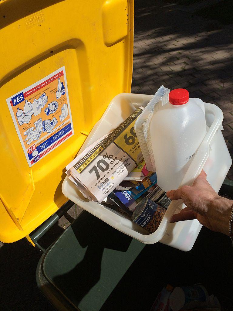 Pictured is a person putting household recyclable refuse into recycling bin for fortnightly garbage collection.