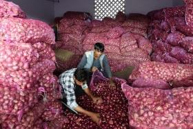 Onion prices reach Rs 7,990 per quintal in Maharashtra's Lasalgaon, touch all-time high after 72-years