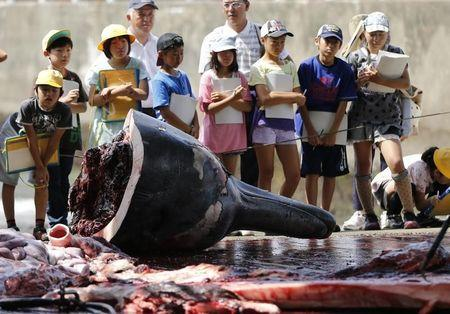 Grade school students and residents watch a carved Baird's Beaked whale at Wada port in Minamiboso, southeast of Tokyo June 26, 2014.  REUTERS/Issei Kato/Files