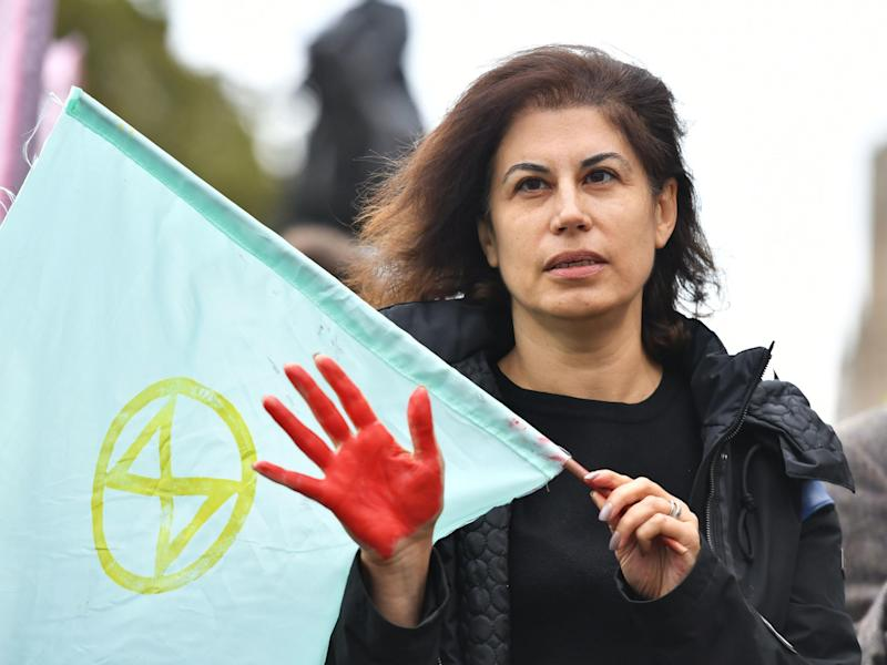 Extinction Rebellion protester red hand westminster: PA