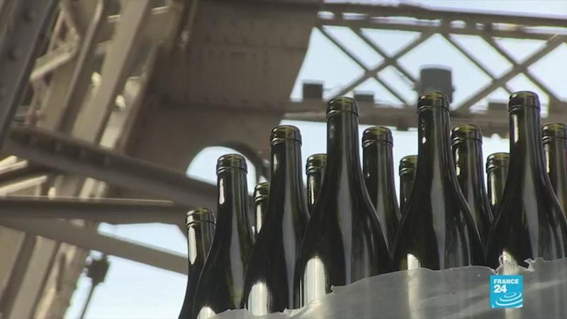 'Elegance and finesse': Eiffel Tower wine cellar bears fruit as merlot debuts