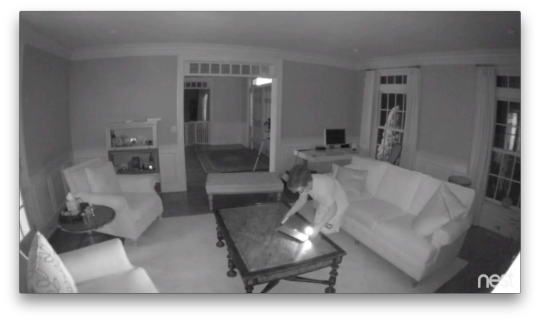 live room cams the nest security is a winner but holding onto your 11531