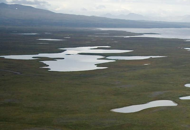 This undated image provided by the U.S. Fish and Wildlife Service shows an aerial view of coastal waters and landmass at the Izembek National Wildlife Refuge. Izembek Lagoon is 25 miles of Alaska ocean sheltered from the Bering Sea by long barrier islands, but it's what's beneath the water that makes it special for environmentalists. The shallow lagoon is home to the largest known bed of eelgrass, a plant that grows like green ribbons from the ocean floor and every autumn provides a nutritious buffet for waterfowl that spend summers in Alaska or Russia and head south for warmer climates. (AP Photo/USFWS)
