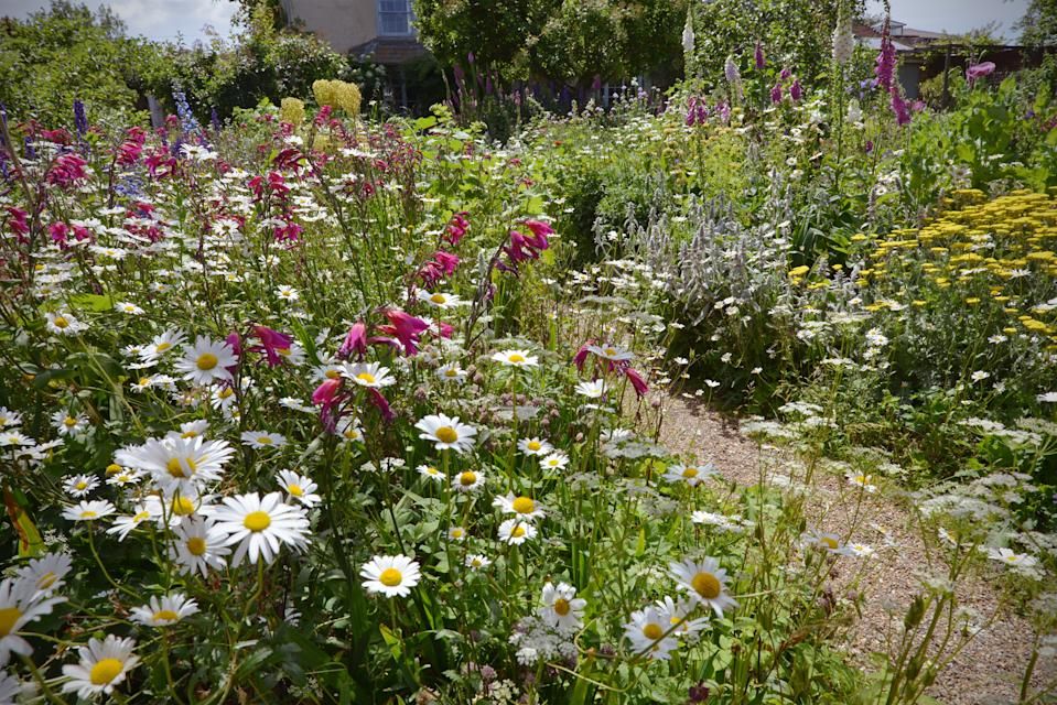 cottage garden with flowerbeds packed with flowers