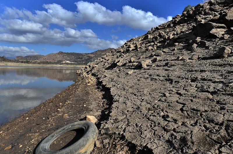 Central America's Dry Corridor is vulnerable to drought that can ravage crops and leaving drinking water in short supply (AFP Photo/ORLANDO SIERRA)