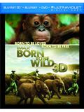 Born to Be Wild Box Art