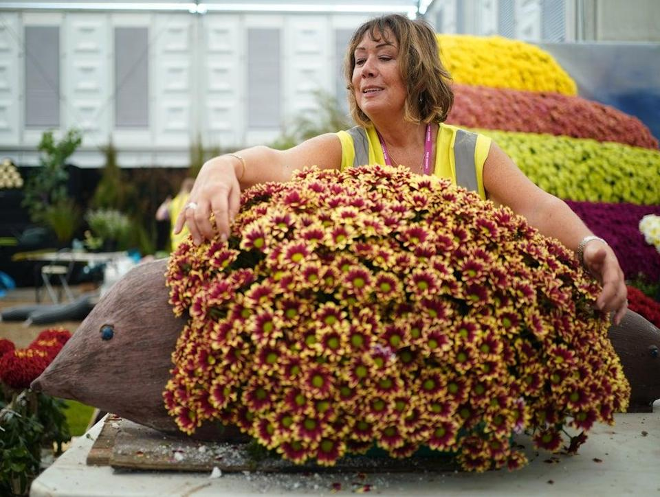 A woman works on a hedgehog floral exhibit on the National Chrysanthemum Society stand (Yui Mok/PA) (PA Wire)