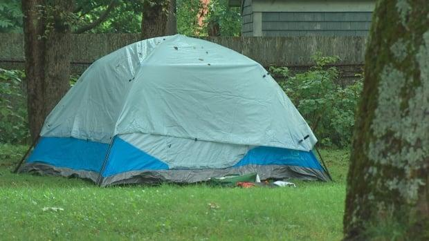 A tent is pitched in a small green space on Chebucto Road in Halifax. Homeless encampments were the subject of more than 200 calls to 311 in the year or so before the evictions in August. (CBC - image credit)