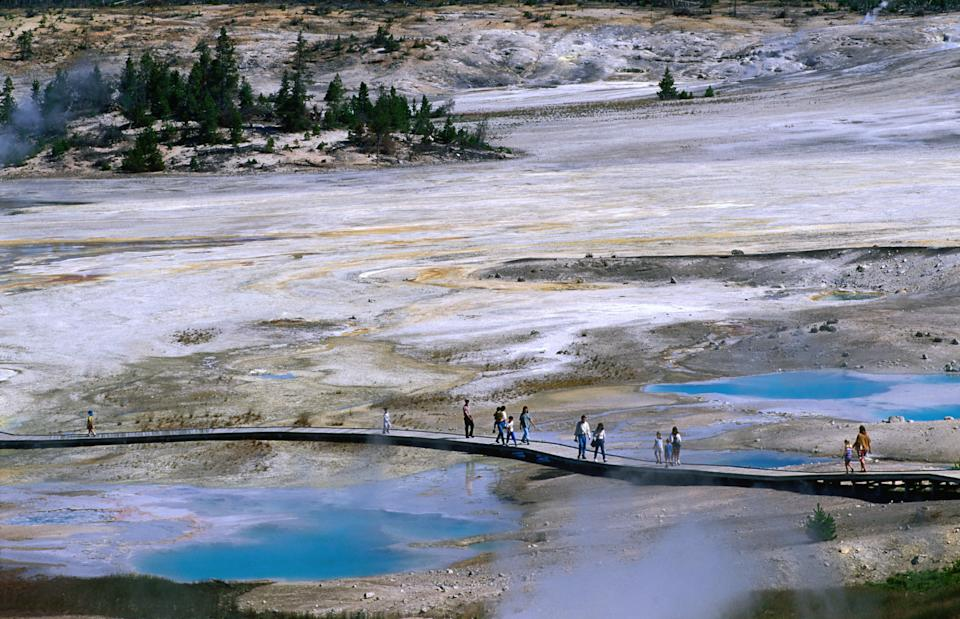 People walking across a boardwalk at Yellowstone National Park's hot springs.