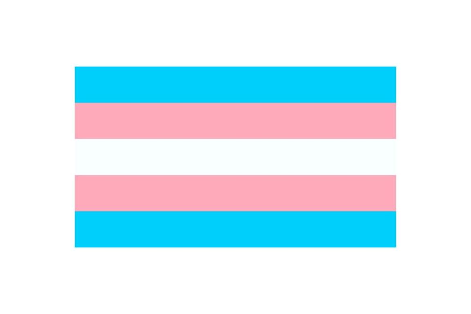 """<p>Monica Helms, a transgender activist and former member of the U.S. Navy, created the transgender pride flag in 1999. The light pink and light blue are common colors that denote girls and boys, respectively, while the white stripe in the middle is for people who """"are intersex, transitioning, or see themselves as having a neutral or undefined gender,"""" <a href=""""https://www.unco.edu/gender-sexuality-resource-center/resources/pride-flags.aspx#:~:text=Genderqueer%20Pride%20Flag&text=A%20non%2Dbinary%20flag%20was,represent%20non%2Dbinary%20people%20specifically.&text=Lavender%3A%20Mixture%20of%20%E2%80%9Cblue%E2%80%9D,White%3A%20Represents%20agender%20people."""" rel=""""nofollow noopener"""" target=""""_blank"""" data-ylk=""""slk:per the University of Northern Colorado's Gender & Sexuality Research Center"""" class=""""link rapid-noclick-resp"""">per the University of Northern Colorado's Gender & Sexuality Research Center</a> (UNCO).</p><p>Helms also founded TAVA, the Transgender American Veterans Association.</p>"""