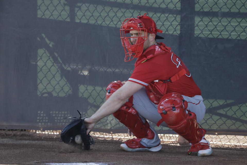 Los Angeles Angels catcher Max Stassi catches a pitch during spring training baseball practice, Wednesday, Feb. 12, 2020, in Tempe, Ariz. (AP Photo/Darron Cummings)