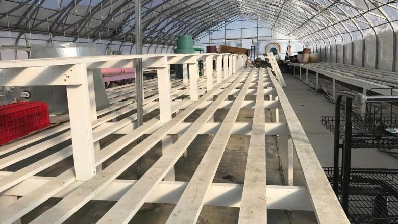 Cold weather delays Yukon growers