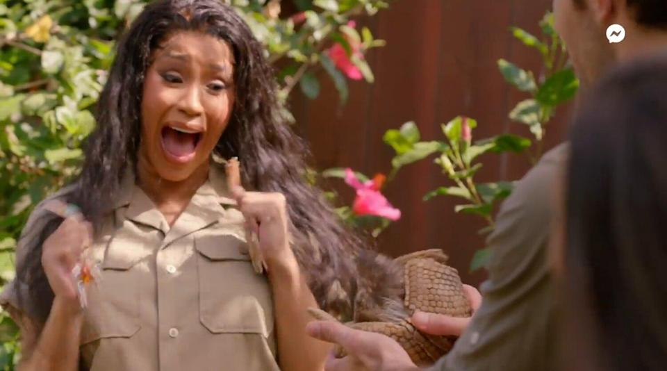 Cardi B freaking out at an armadillo