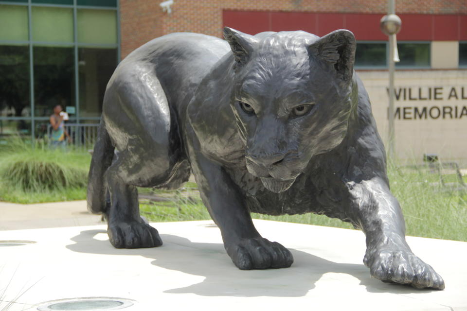 This 2021 photo shows the Panther statue at Prairie View A&M University in Prairie View, Texas. Philanthropist MacKenzie Scott has funded organizations that received the most money for racial equity in 27 different states following the police killing of George Floyd. According to an AP analysis of new preliminary data from the philanthropy research organization Candid, Scott was responsible for approximately $567 million given to these organizations. (Michael T. Thomas/Prairie View A&M University Marketing and Communications via AP)