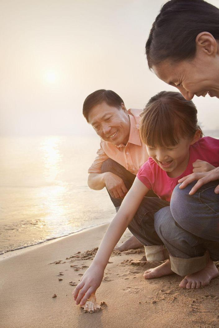 """<p>Start a collection with Dad and make it something that just the two of you do. It's a tradition you can begin on Father's Day, with an outing to find seashells, rocks, or pinecones. Then you can continue finding those items together and watch your collection grow.</p><p><a class=""""link rapid-noclick-resp"""" href=""""https://go.redirectingat.com?id=74968X1596630&url=https%3A%2F%2Fwww.walmart.com%2Fip%2FFloating-Shell-Net%2F246903350&sref=https%3A%2F%2Fwww.thepioneerwoman.com%2Fholidays-celebrations%2Fg36333267%2Ffathers-day-activities%2F"""" rel=""""nofollow noopener"""" target=""""_blank"""" data-ylk=""""slk:SHOP SHELL NETS"""">SHOP SHELL NETS</a></p>"""