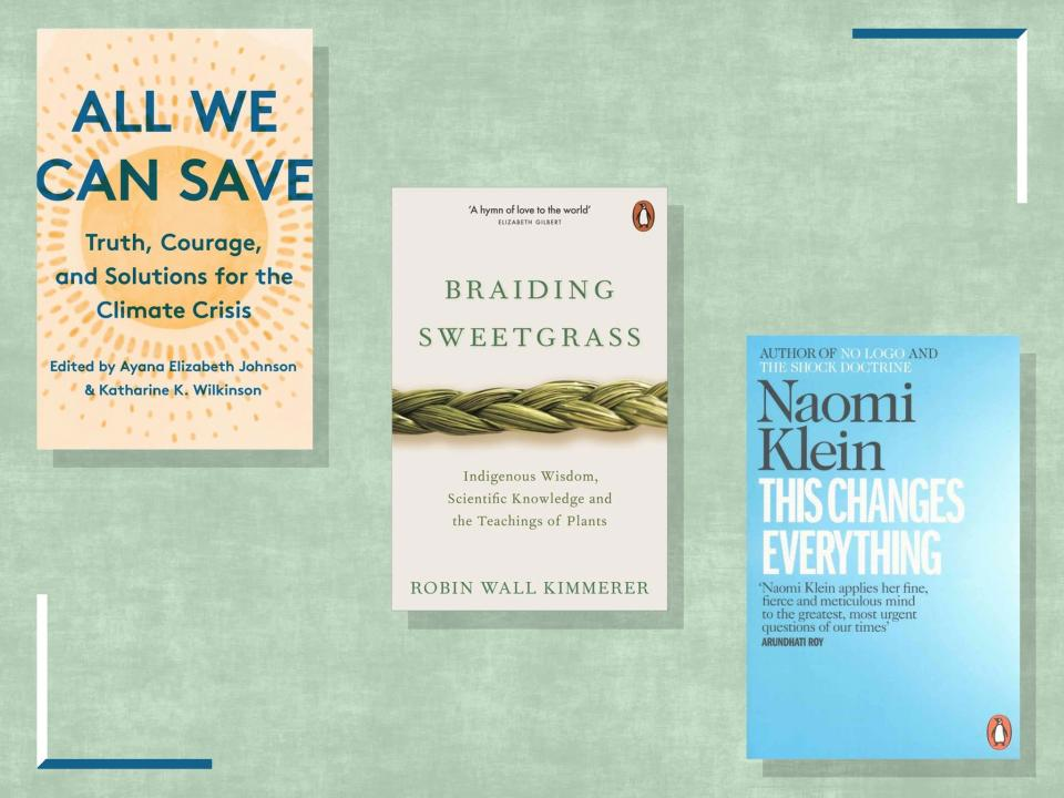 <p>These non-fiction tomes will arm you with the essential facts and offer hope about how we can achieve a just and clean energy future</p> (iStock/The Independent)