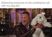 "<p>Dogs: Improving meetings since March 2020.</p><p><a href=""https://www.instagram.com/p/B94YnHsAQ5-/"" rel=""nofollow noopener"" target=""_blank"" data-ylk=""slk:See the original post on Instagram"" class=""link rapid-noclick-resp"">See the original post on Instagram</a></p>"