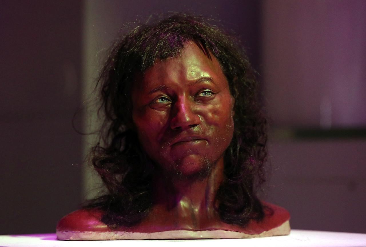 <p>Full facial reconstruction model of a head based on the skull of Britain's oldest complete skeleton on display during a screening event of The First Brit: Secrets Of The 10,000 Year Old Man at The Natural History Museum, in London. (PA) </p>