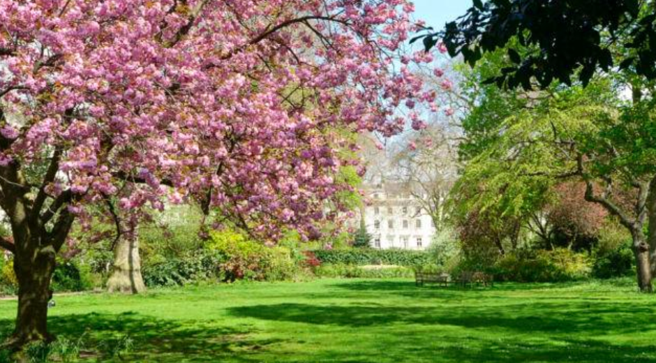 Picturesque Belgravia Square. Photo: Zoopla
