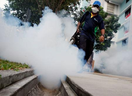 Zika virus no longer public health concern, says WHO