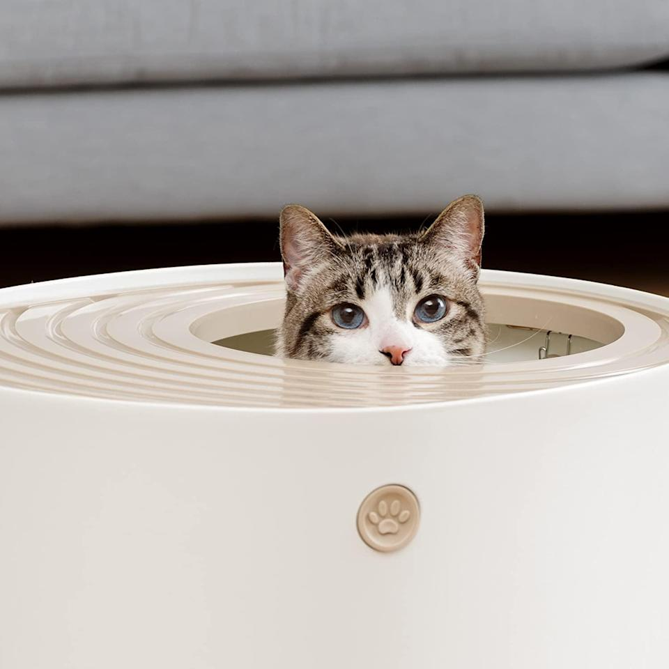 <p>Cat-lovers will enjoy this stylish <span>Iris Top Entry Cat Litter Box</span> ($33).</p>