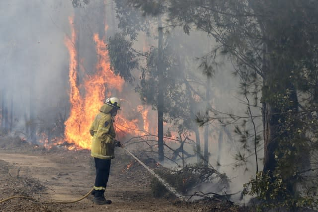 Australian firefighters have been battling to try to control extensive bush fires (Rick Rycroft/AP)
