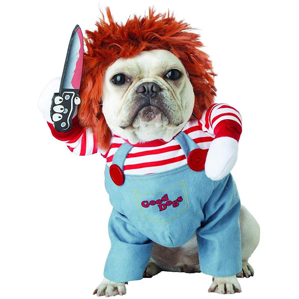 "<p>There is something scary, sweet about Chucky for dog lovers this year. </p> <p><strong>Buy it!</strong> Pet Deadly Doll Costume, $32.99; <a href=""https://www.amazon.com/California-Costumes-Collections-PET20157-Apparel/dp/B07D5L9LRJ/ref=as_li_ss_tl?ie=UTF8&linkCode=ll1&tag=polifemostpopulardogcostumeskbenderoct20-20&linkId=b3a36f1e437369fb6c2eff2011506f1e"" rel=""nofollow noopener"" target=""_blank"" data-ylk=""slk:Amazon.com"" class=""link rapid-noclick-resp"">Amazon.com</a> </p>"