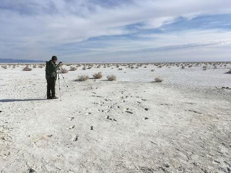 Fossils found at White Sands show humans followed sloth creatures