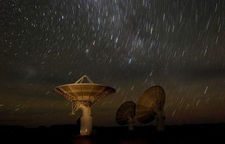 FILE PHOTO: Star trails form over radio telescope dishes of the KAT-7 Array in a long exposure picture taken at the proposed South African site for the Square Kilometre Array (SKA) telescope near Carnavon in the country's remote Northern Cape province, South Africa, May 17, 2012.   REUTERS/Mike Hutchings/File Photo